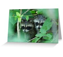 Shhhh...be quiet! Maybe she won't see us..... Greeting Card