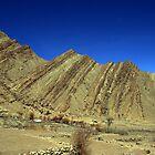Hemis Gonpa, Ladakh by Vivek Bakshi
