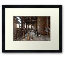 Rusty Cage Framed Print