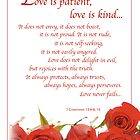 Love is Patient Roses by SandraRose