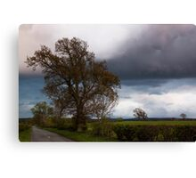 Before The Rain Canvas Print
