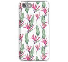 Pink strelitzia iPhone Case/Skin