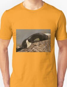 Canada goose, Mud Lake, Ottawa, Ontario T-Shirt