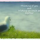 Thinking of You by Kathy Nairn