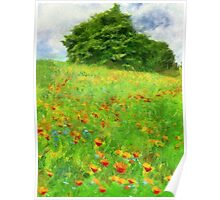 Hillside With Flowers And Trees Poster