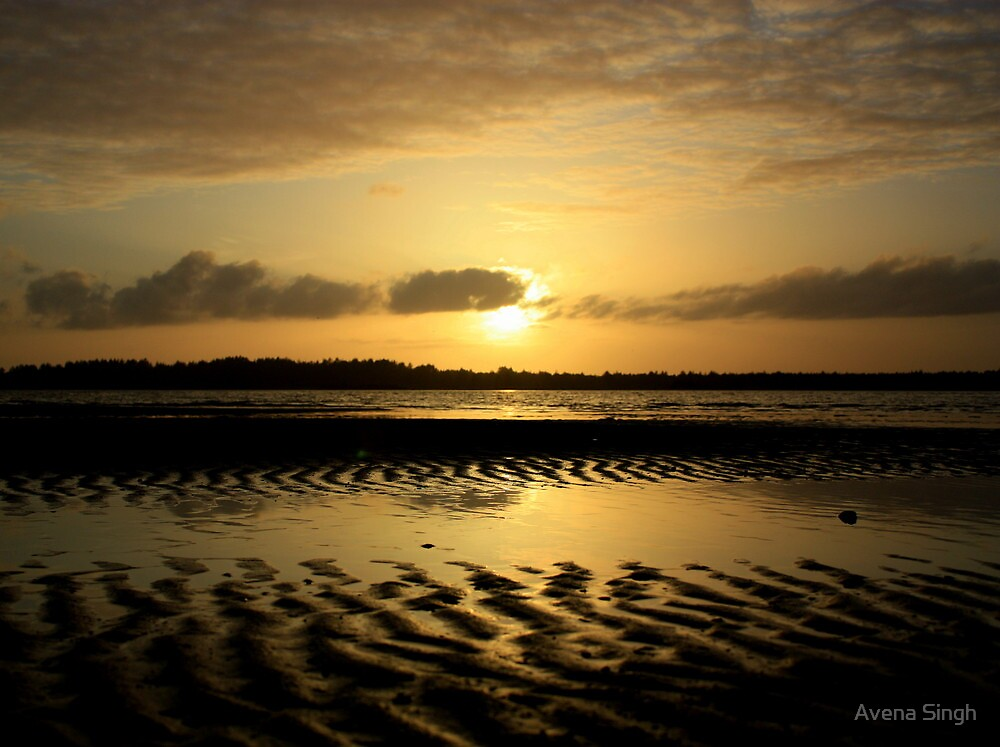 Golden Sunset by Avena Singh