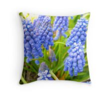 Silla Blue and not Black! Throw Pillow