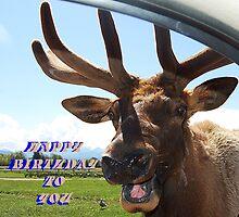 Happy Birthday To You by Jonice
