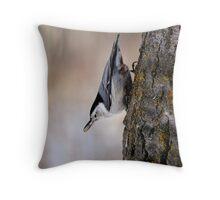 Defy Gravity - Elk Island National Park Throw Pillow
