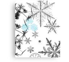 Winter brushes Canvas Print
