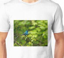 Indigo Bunting - Passerina cyanea Unisex T-Shirt
