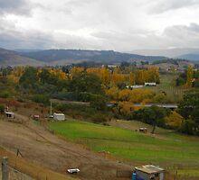 Autumn in the Derwent Valley Tasmania by Beth Mills