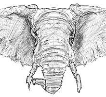 Broken Elephant by Arnau Ros