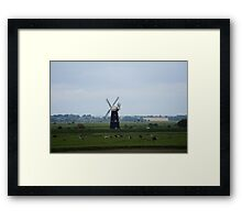 Cows grazing in front of Berney Arms Windmill Framed Print