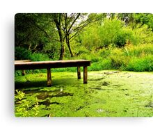 tranquil in green Canvas Print