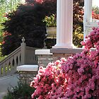 Colonial Porch Columns-Azalea Bushes by JeffeeArt4u