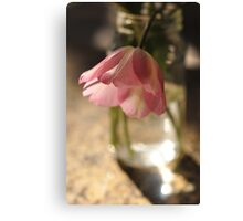 Tulips in the kitchen i Canvas Print
