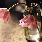 Tulips in the kitchen ii by Denise Couturier