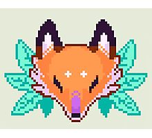Pixel Fox Photographic Print