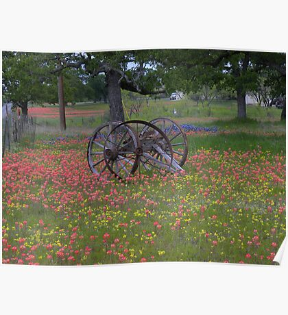Wagon wheel nestled in Indian Paint Brushes in Texas  Poster