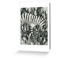 Zebra Apologia Greeting Card