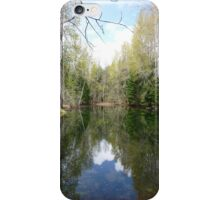 Reflecting Pond II, Timberline Village iPhone Case/Skin