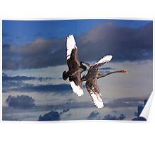 Sky Ballet Poster