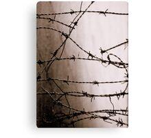 Looking Beyond Memory Canvas Print