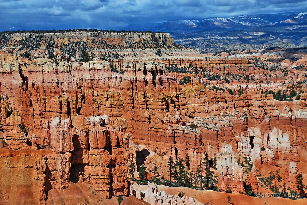 Bryce Canyon by Barbara Manis
