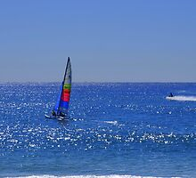 Sailing fun in the sun #2  by Virginia McGowan