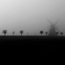 Foggy day  by Suzana Ristic
