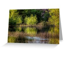 Reflecting Green Greeting Card