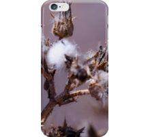 Cotton Prickle  iPhone Case/Skin