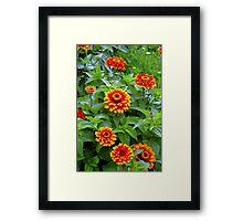 Spring Showcase Framed Print