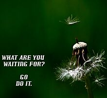 What are you waiting for.....Motivational Poster by GlennB