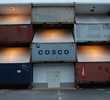 Cosco by night by vesa50