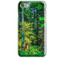 Golden Serenity  iPhone Case/Skin