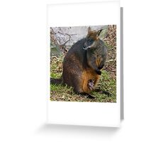 Peekaboo! Greeting Card