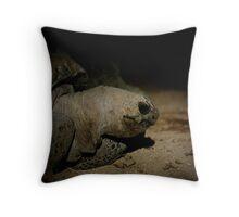 Galapagos Tortoise Throw Pillow