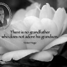 Grandfathers and Grandsons by Bonnie T.  Barry
