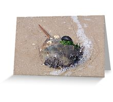 Hitchhikers Greeting Card