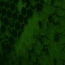 Dark Green Animal Snake Print by Melissa Park