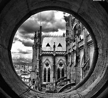 The Window by Bernai Velarde
