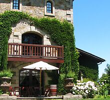 Old Winery  by Tom-Sky