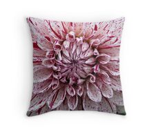 Variegated colors Throw Pillow