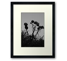 End of the summer Framed Print