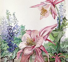 Pink Columbine by clotheslineart