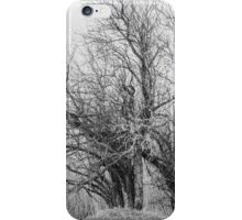 Sinister iPhone Case/Skin
