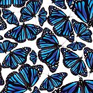 Blue Monarch Butterflies by TinaGraphics