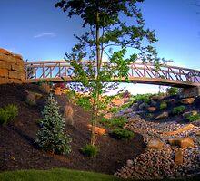 Prestwick of Avon Bridge by David Owens